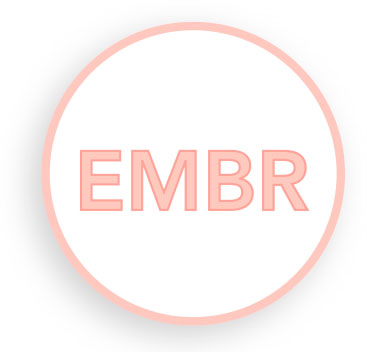Embryoscope
